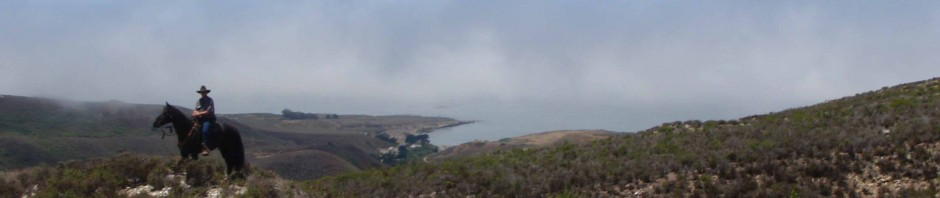 Ocean view on the trail