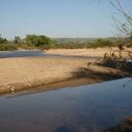 Salinas River 2011