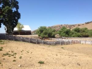 Cagliero Farm