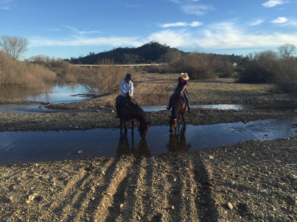 Salinas River February 2016